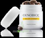 Oenobiol Solaire Intensif Caps Peau Normale Pot/30 à COLLONGES-SOUS-SALEVE