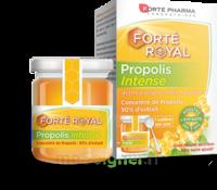 Forte Pharma Propolis Intense Gelée Pot/40g à COLLONGES-SOUS-SALEVE
