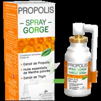 3 Chenes Propolis Spray Gorge Fl/25ml à COLLONGES-SOUS-SALEVE