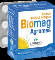 Lehning Biomag Comprimés à Croquer Agrumes B/90 à COLLONGES-SOUS-SALEVE