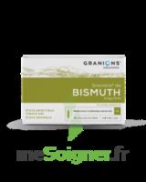 Granions De Bismuth 2 Mg/2 Ml S Buv 10amp/2ml à COLLONGES-SOUS-SALEVE