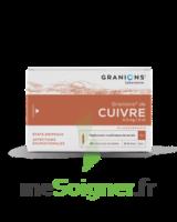 Granions De Cuivre 0,3 Mg/2 Ml S Buv 30amp/2ml à COLLONGES-SOUS-SALEVE