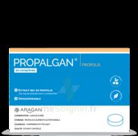 Aragan Propalgan Comprimés Orodispersibles Adulte B/20 à COLLONGES-SOUS-SALEVE