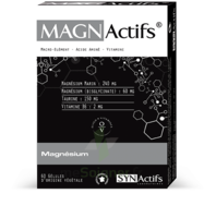 Synactifs Magnactifs Gélules B/60 à COLLONGES-SOUS-SALEVE