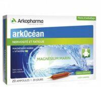 Arkocean Magnesium Marin Solution Buvable Caramel 20 Ampoules/10ml