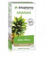 Arkogélules Ananas Gélules Fl/45 à COLLONGES-SOUS-SALEVE
