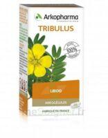 Arkogélules Tribulus Gélules Fl/45 à COLLONGES-SOUS-SALEVE
