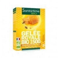 Santarome Bio Gelée Royale 1500 Solution Buvable 20 Ampoules/10ml à COLLONGES-SOUS-SALEVE