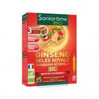 Santarome Bio Ginseng Gelée Royale Guarana Acérola Solution Buvable 20 Ampoules/10ml à COLLONGES-SOUS-SALEVE