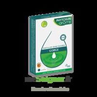 Phytosun Arôms Pastilles Sans Sucre Gorge Arôme Miel X 24 à COLLONGES-SOUS-SALEVE