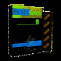 Synactifs Respigreen Bio Gélules B/10 à COLLONGES-SOUS-SALEVE