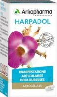 Arkogelules Harpagophyton Gélules Fl/150 à COLLONGES-SOUS-SALEVE