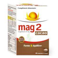 Mag 2 Cacao, Fl 60 à COLLONGES-SOUS-SALEVE