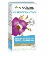 Arkogelules Harpagophyton Gélules Fl/45 à COLLONGES-SOUS-SALEVE