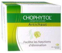 Chophytol Cpr Enr 6plaq/30 à COLLONGES-SOUS-SALEVE
