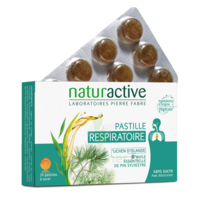 Naturactive Pastilles Respiratoires Aux Essences B/24 à COLLONGES-SOUS-SALEVE