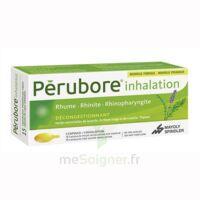 Perubore Caps Inhalation Par Vapeur Inhalation Plq/15 à COLLONGES-SOUS-SALEVE