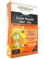 Herbesan Gelée Royale Miel - Zinc Dès 4 Ans B/20 à COLLONGES-SOUS-SALEVE