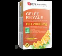 Forte Pharma Gelée Royale Bio 2000 Mg Solution Buvable 20 Ampoules/15ml à COLLONGES-SOUS-SALEVE