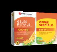 Forte Pharma Gelée Royale 1000 Mg Solution Buvable 2*b/20 Ampoules/10ml à COLLONGES-SOUS-SALEVE
