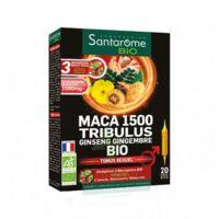 Santarome Bio Maca 1500 Tribulus Ginseng Gingembre Solution Buvable 20 Ampoules/10ml à COLLONGES-SOUS-SALEVE