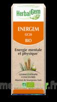 Herbalgem Energem Solution Buvable Bio Fl Cpte-gttes/30ml à COLLONGES-SOUS-SALEVE