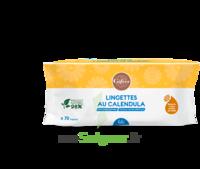 Gifrer Lingette Au Calendula Paquet/70 à COLLONGES-SOUS-SALEVE