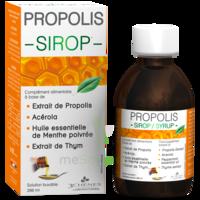 3 Chenes Propolis Sirop Fl/200ml à COLLONGES-SOUS-SALEVE