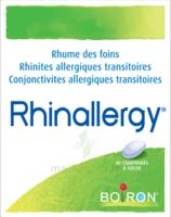 Boiron Rhinallergy Comprimés B/40 à COLLONGES-SOUS-SALEVE