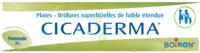 Boiron Cicaderma Pommade à COLLONGES-SOUS-SALEVE