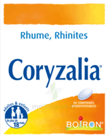 Boiron Coryzalia Comprimés Orodispersibles à COLLONGES-SOUS-SALEVE